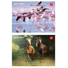 """Альбом для рисования, 32 л., BRAUBERG (БРАУБЕРГ), обложка мелованный картон, """"Живая природа"""", 2 вида"""
