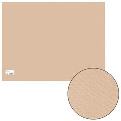 "Бумага для пастели CANSON ""Mi-Teintes"" (""Митант""),А2+, 500х650 мм, 160 г/м, 2-стор., золот.-розовая"