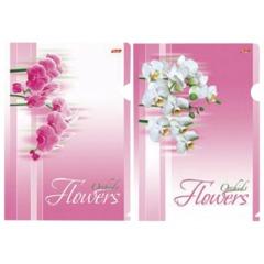 """Папка-уголок с рисунком HATBER HD, А4, """"Нежные Орхидеи"""", ассорти, 0,18 мм, AG4"""