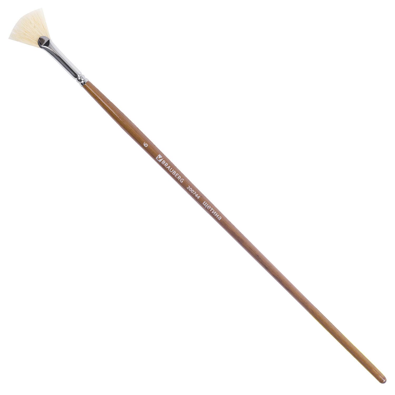 Кисть художественная профессиональная BRAUBERG ART CLASSIC, щетина, веерная, № 6, длинная ручка