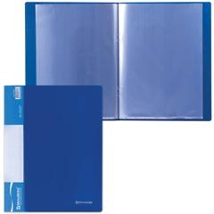 Папка 10 вкладышей BRAUBERG (БРАУБЕРГ) стандарт, синяя, 0,5 мм