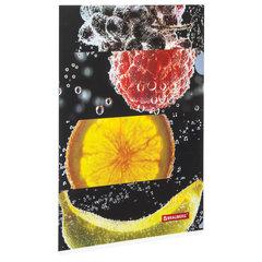 """Папка-уголок BRAUBERG """"FRESH ZONE"""", А4, 150 мкм, цветная печать, 228035"""
