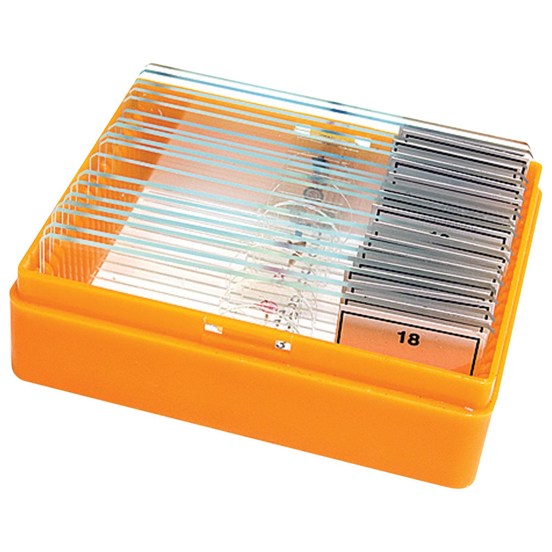 Набор готовых микропрепаратов LEVENHUK N18 NG (18 образцов, стекла), 29276
