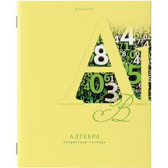 Тетрадь предметная ПАСТЕЛЬНАЯ 48 листов, обложка картон, АЛГЕБРА, клетка, подсказ, BRAUBERG, 403953