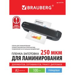 Пленки-заготовки для ламинирования БОЛЬШОГО ФОРМАТА, А3, КОМПЛЕКТ 100 шт., 250 мкм, BRAUBERG, 531779