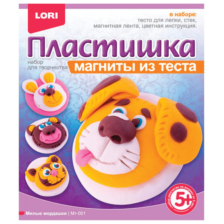 """Набор для лепки на магните ПЛАСТИШКА """"Милые мордашки"""", тесто для лепки, стек, магнит, LORI, Мт-001"""