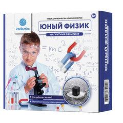 """Набор для экспериментов """"Юный физик. Магнитный лабиринт"""", INTELLECTICO, 211"""