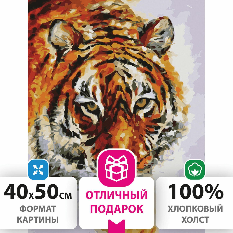 """Картина по номерам 40х50 см, ОСТРОВ СОКРОВИЩ """"Тигр"""", на подрамнике, акриловые краски, 3 кисти, 662473"""