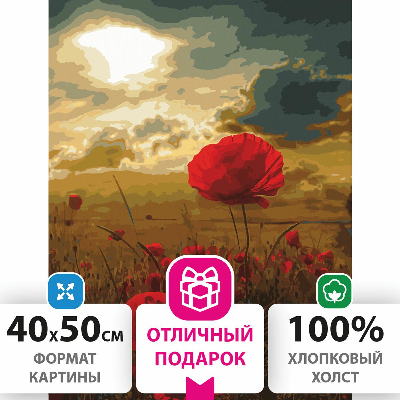 """Картина по номерам 40х50 см, ОСТРОВ СОКРОВИЩ """"Маковое поле"""", на подрамнике, акриловые краски, 3 кисти, 662493"""