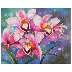 """Картина по номерам 40х50 см, ОСТРОВ СОКРОВИЩ """"Орхидеи"""", на подрамнике, акрил, кисти, 662908"""